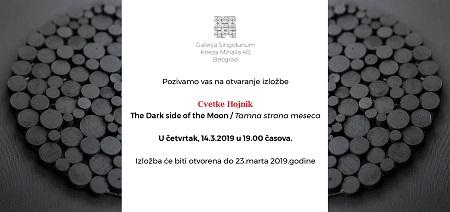 Dark side of the Moon - Cvetka Hojnik